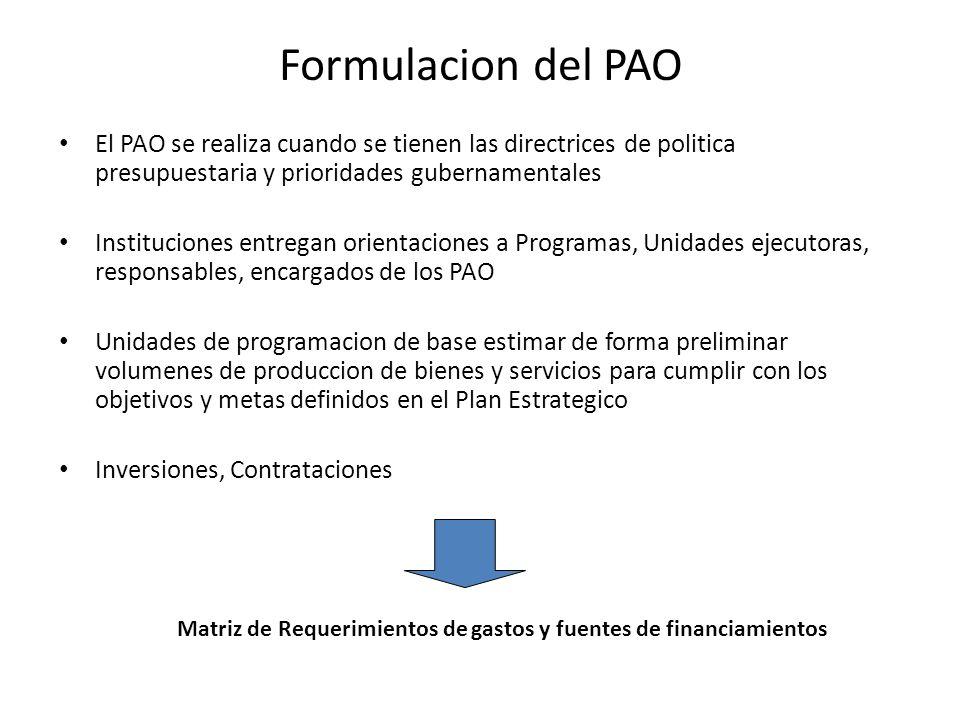 Formulacion del PAO El PAO se realiza cuando se tienen las directrices de politica presupuestaria y prioridades gubernamentales Instituciones entregan