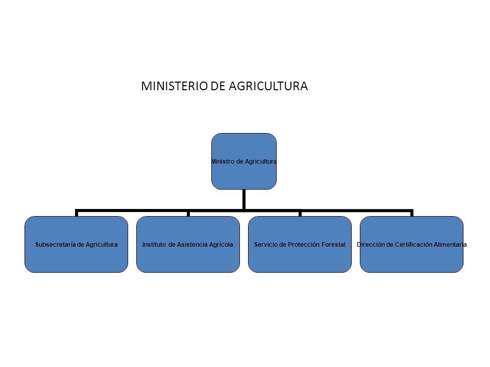 Ministro de Agricultura Subsecretaría de Agricultura Instituto de Asistencia Agrícola Servicio de Protección Forestal Dirección de Certificación Alimentaria MINISTERIO DE AGRICULTURA