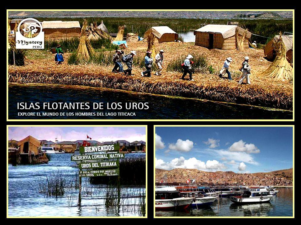 En 1978 fue creada la Reserva Nacional del Titicaca, se trata de un Área Natural Protegida con el fin de preservar los recursos naturales propios del