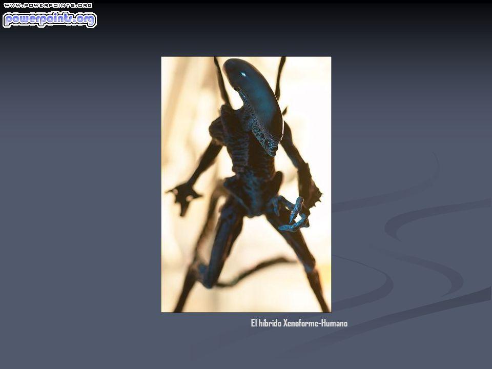 El híbrido Xenoforme-Humano