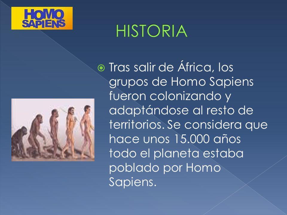 Tras salir de África, los grupos de Homo Sapiens fueron colonizando y adaptándose al resto de territorios. Se considera que hace unos 15.000 años todo