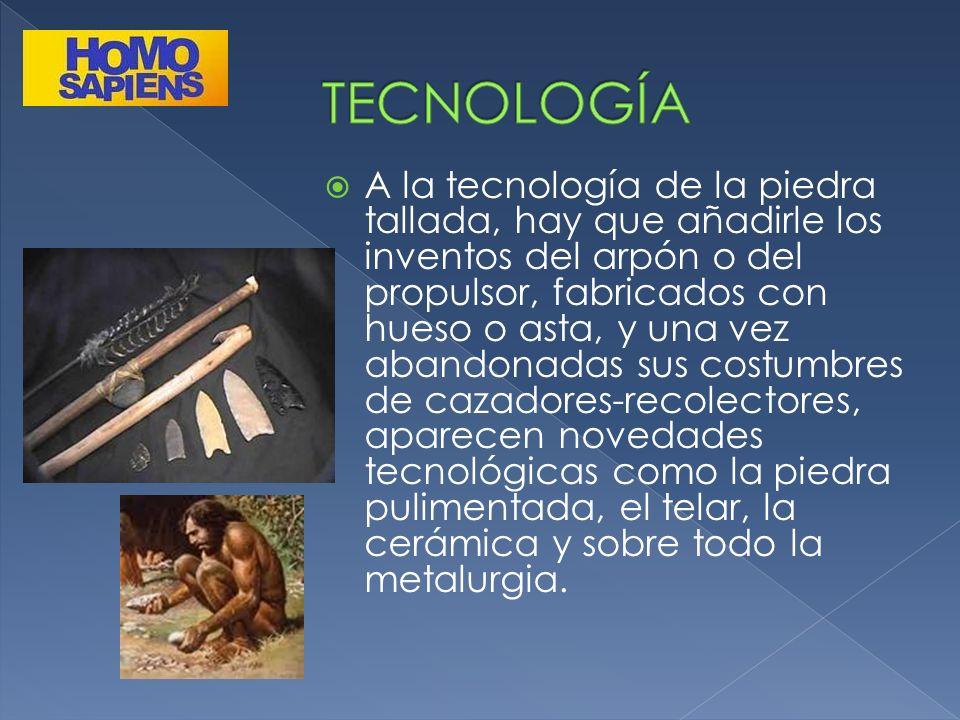 A la tecnología de la piedra tallada, hay que añadirle los inventos del arpón o del propulsor, fabricados con hueso o asta, y una vez abandonadas sus