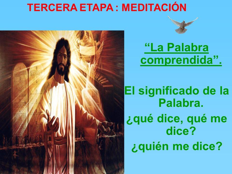 7. «¿Qué está diciendo este hombre? ¡Está blasfemando! ¿Quién puede perdonar los pecados, sino sólo Dios?». 8. Jesús, advirtiendo en seguida que pensa