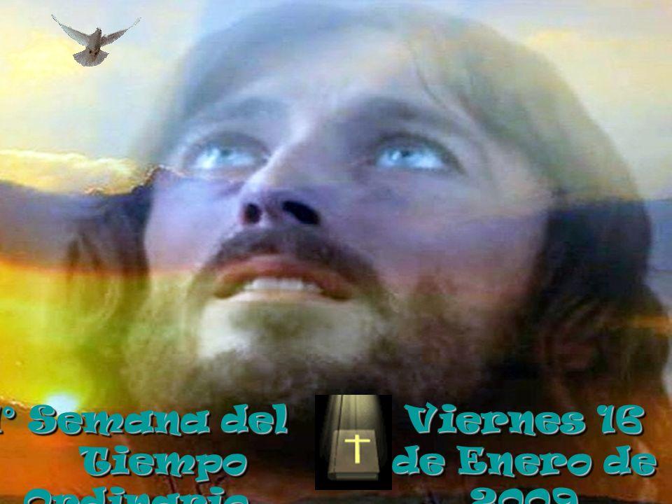 Evangelio : San Marcos 2, 1- 12