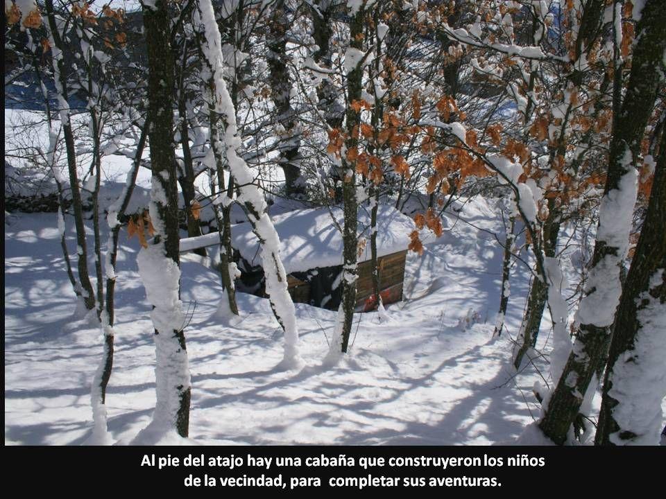 Al pie del atajo hay una cabaña que construyeron los niños de la vecindad, para completar sus aventuras.