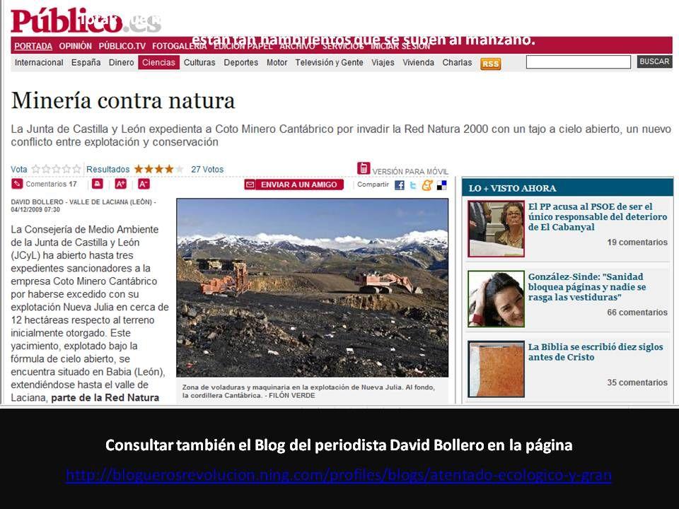Consultar también el Blog del periodista David Bollero en la página http://bloguerosrevolucion.ning.com/profiles/blogs/atentado-ecologico-y-gran