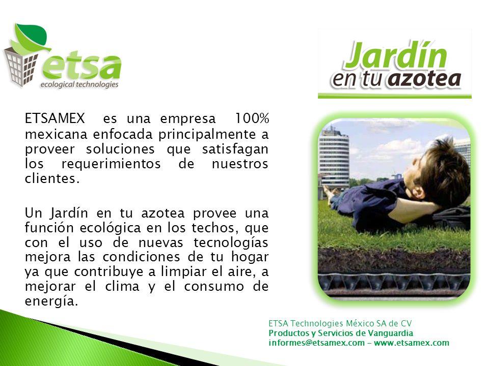 ETSAMEX es una empresa 100% mexicana enfocada principalmente a proveer soluciones que satisfagan los requerimientos de nuestros clientes.