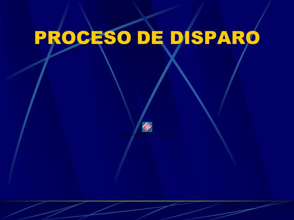 PROCESO DE DISPARO