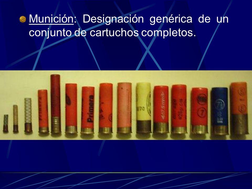 Munición: Designación genérica de un conjunto de cartuchos completos.