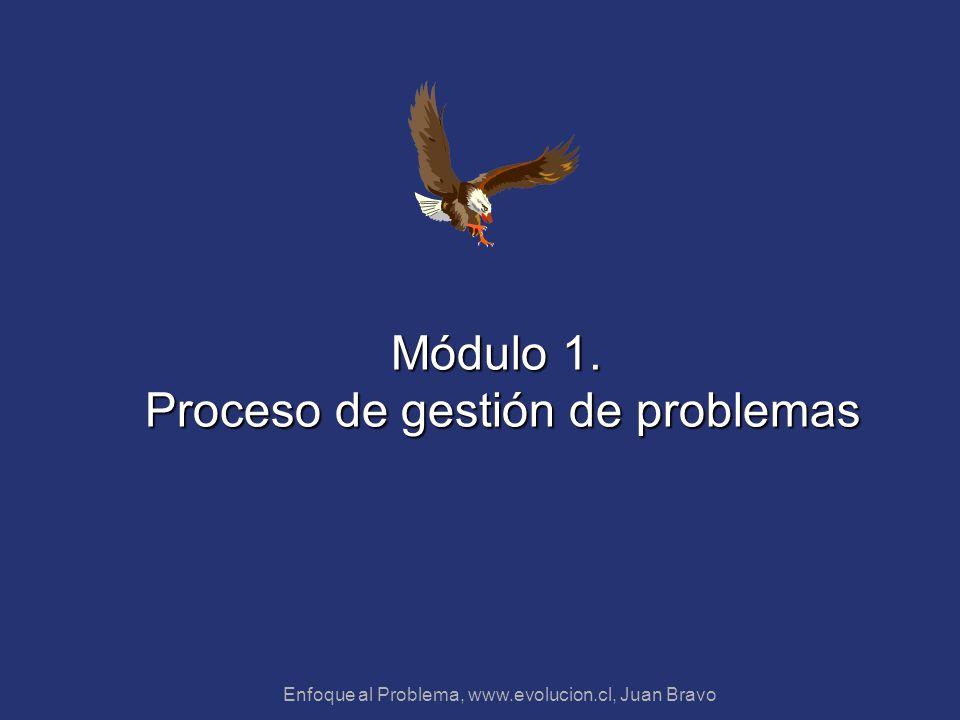 Enfoque al Problema, www.evolucion.cl, Juan Bravo Módulo 1. Proceso de gestión de problemas