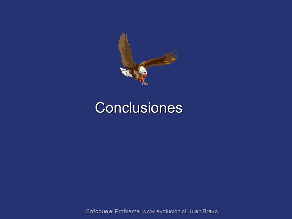 Enfoque al Problema, www.evolucion.cl, Juan Bravo Conclusiones