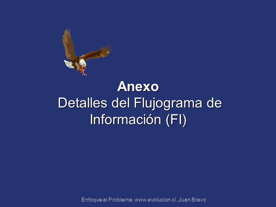 Enfoque al Problema, www.evolucion.cl, Juan Bravo Anexo Detalles del Flujograma de Información (FI)