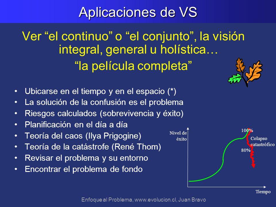 Enfoque al Problema, www.evolucion.cl, Juan Bravo Aplicaciones de VS Ver el continuo o el conjunto, la visión integral, general u holística… la pelícu