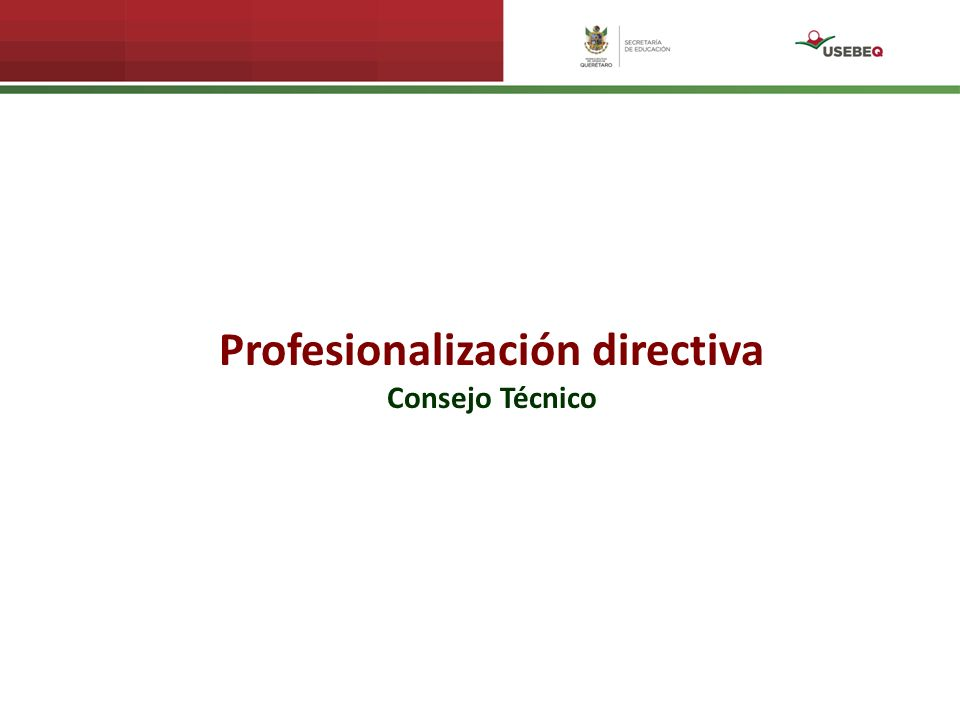 Profesionalización directiva Consejo Técnico