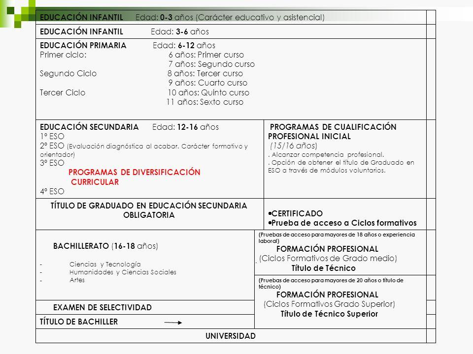 UNIVERSIDAD TÍTULO DE BACHILLER EXAMEN DE SELECTIVIDAD (Pruebas de acceso para mayores de 20 años o título de técnico) FORMACIÓN PROFESIONAL (Ciclos F