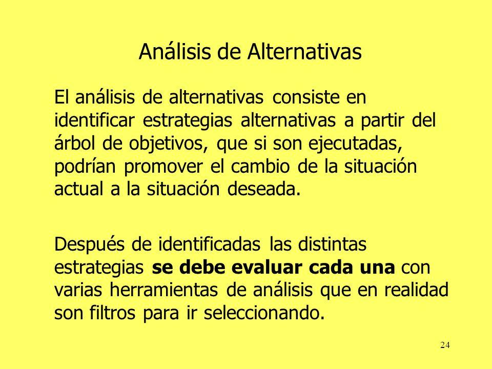 24 Análisis de Alternativas El análisis de alternativas consiste en identificar estrategias alternativas a partir del árbol de objetivos, que si son ejecutadas, podrían promover el cambio de la situación actual a la situación deseada.