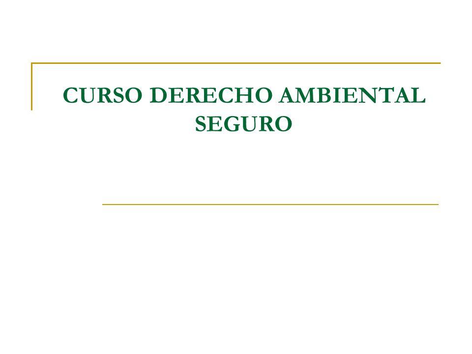 CURSO DERECHO AMBIENTAL SEGURO