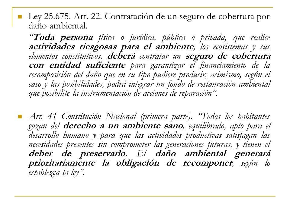 Ley 25.675.Art. 22. Contratación de un seguro de cobertura por daño ambiental.