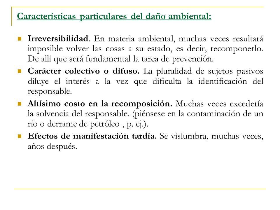 Características particulares del daño ambiental: Irreversibilidad.