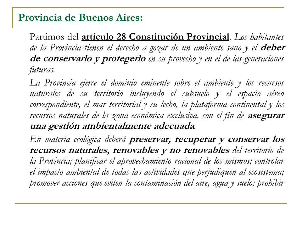 Provincia de Buenos Aires: Partimos del artículo 28 Constitución Provincial.