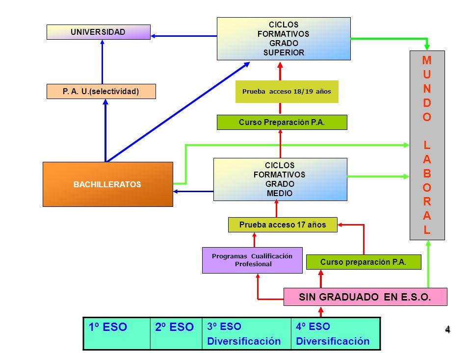 Tipos de materias: Comunes Propias de modalidad Optativas FINALIDAD FINALIDAD Obtención del título de bachiller que permite acceder a la universidad (con la selectividad) o a los ciclos formativos de GS Obtención del título de bachiller que permite acceder a la universidad (con la selectividad) o a los ciclos formativos de GS