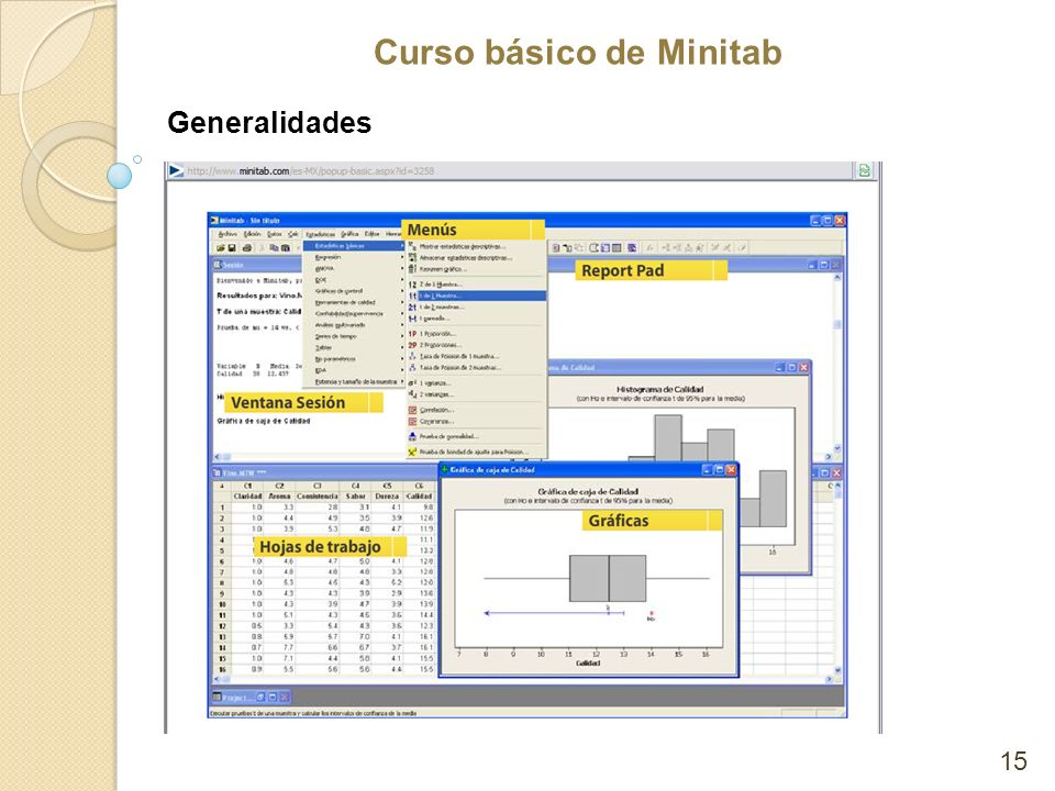 Curso básico de Minitab Generalidades 15