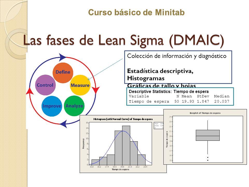 Curso básico de Minitab Las fases de Lean Sigma (DMAIC) Colección de información y diagnóstico Estadística descriptiva, Histogramas Gráficas de tallo