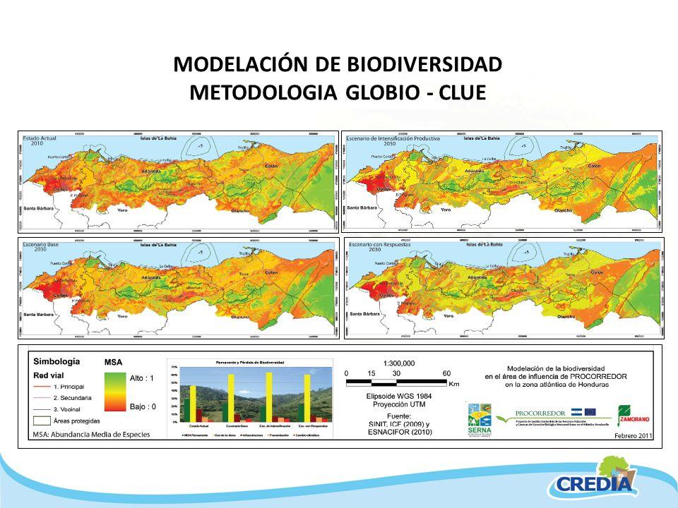 MODELACIÓN DE BIODIVERSIDAD METODOLOGIA GLOBIO - CLUE