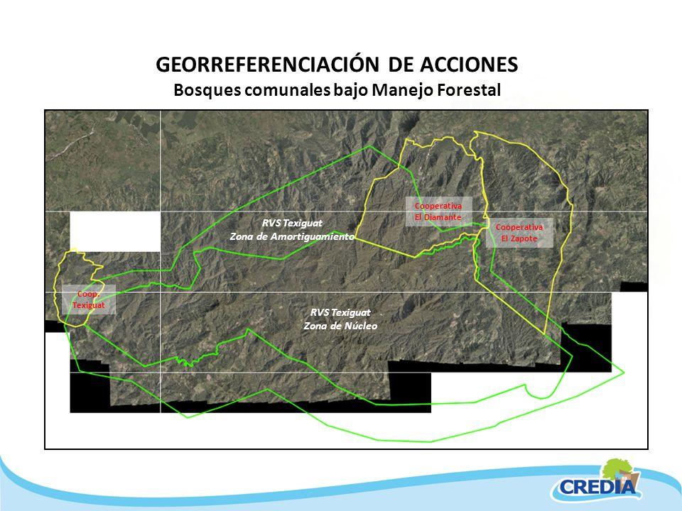 GEORREFERENCIACIÓN DE ACCIONES Bosques comunales bajo Manejo Forestal Coop. Texiguat Cooperativa El Zapote RVS Texiguat Zona de Amortiguamiento RVS Te