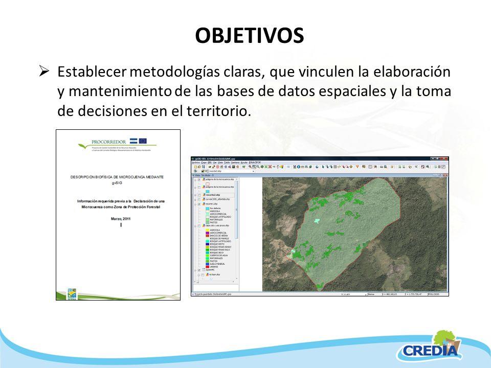 OBJETIVOS Establecer metodologías claras, que vinculen la elaboración y mantenimiento de las bases de datos espaciales y la toma de decisiones en el t