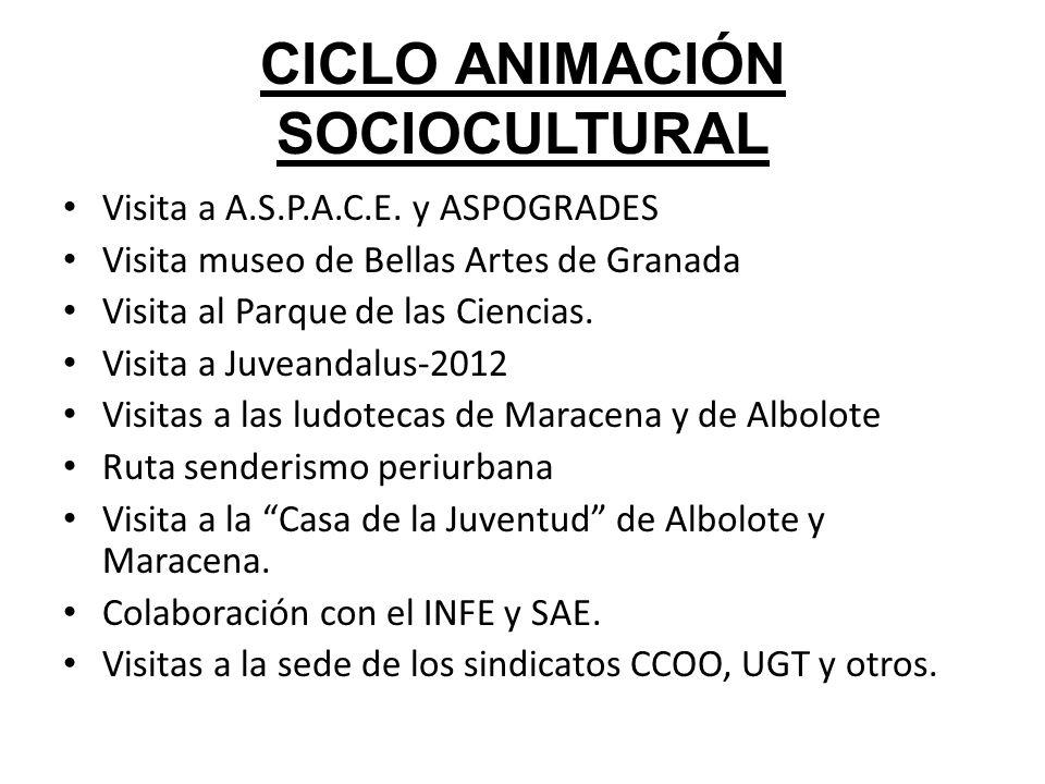 CICLO ANIMACIÓN SOCIOCULTURAL Visita a A.S.P.A.C.E. y ASPOGRADES Visita museo de Bellas Artes de Granada Visita al Parque de las Ciencias. Visita a Ju