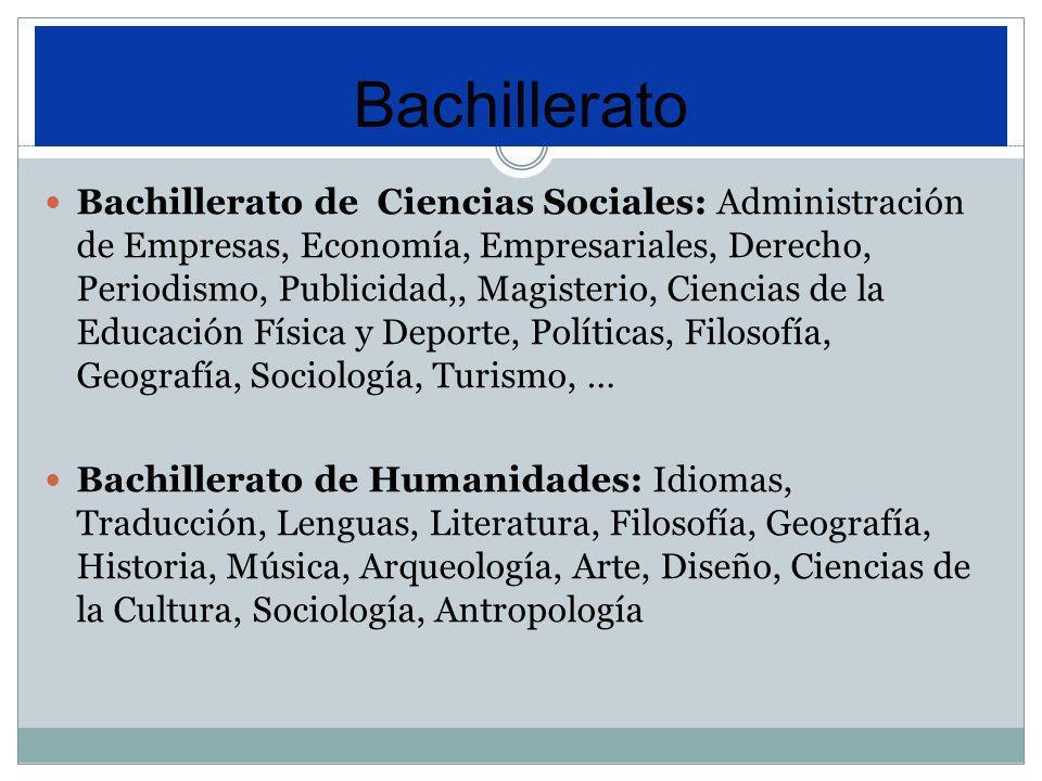 Bachillerato de Ciencias Sociales: Administración de Empresas, Economía, Empresariales, Derecho, Periodismo, Publicidad,, Magisterio, Ciencias de la E
