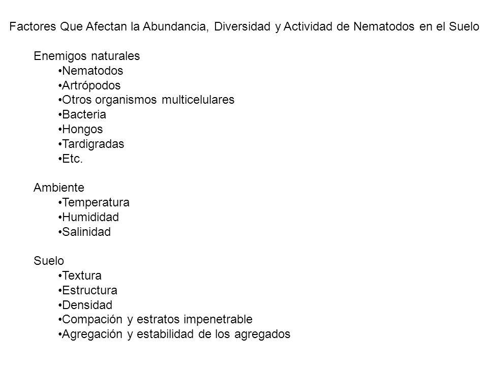 Factores Que Afectan la Abundancia, Diversidad y Actividad de Nematodos en el Suelo Enemigos naturales Nematodos Artrópodos Otros organismos multicelu