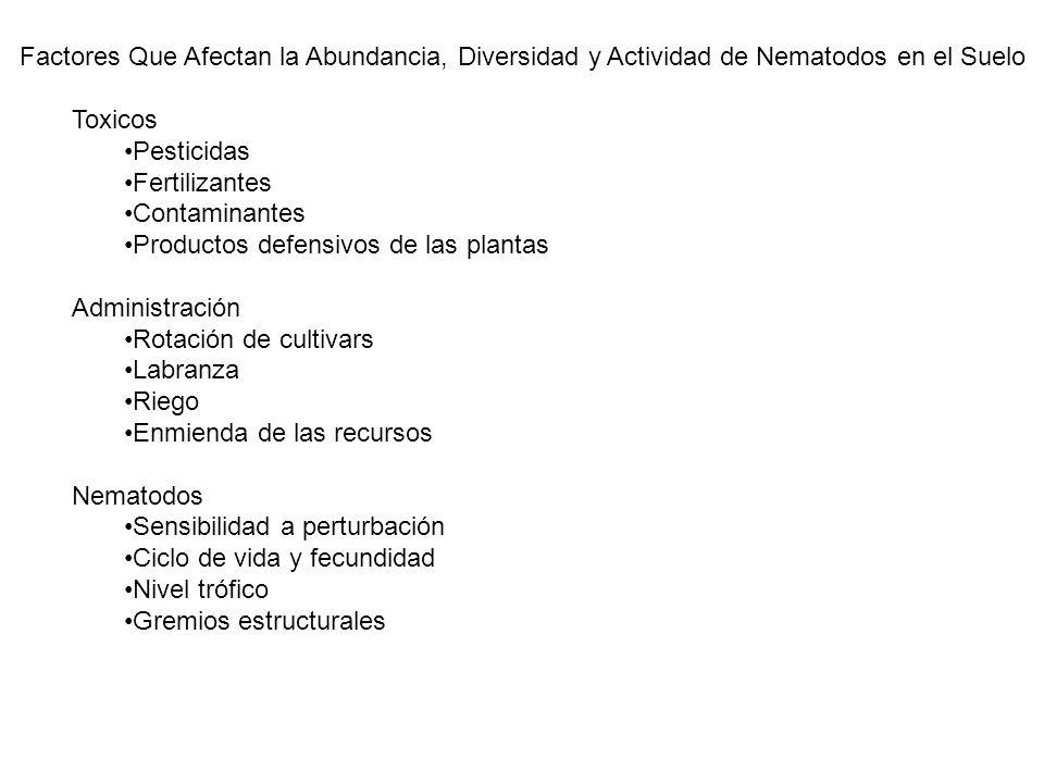 Factores Que Afectan la Abundancia, Diversidad y Actividad de Nematodos en el Suelo Toxicos Pesticidas Fertilizantes Contaminantes Productos defensivo