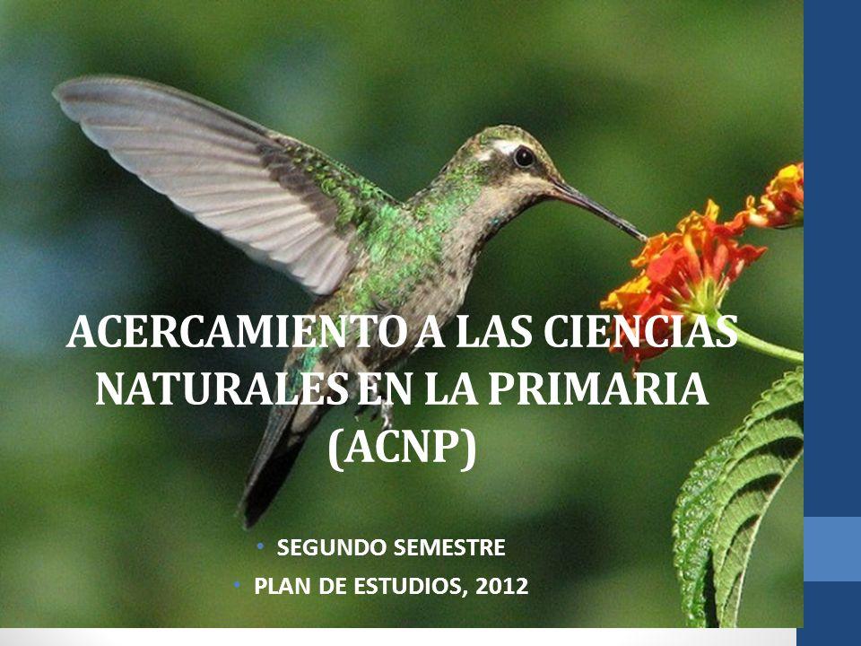 ACERCAMIENTO A LAS CIENCIAS NATURALES EN LA PRIMARIA (ACNP) SEGUNDO SEMESTRE PLAN DE ESTUDIOS, 2012