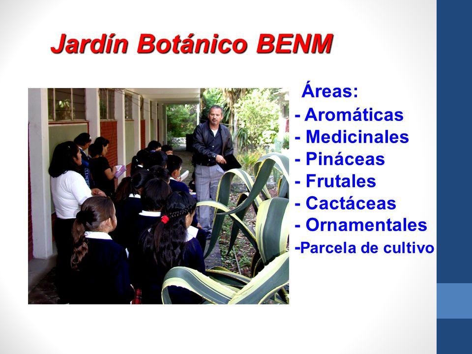 Jardín Botánico BENM Áreas: - Aromáticas - Medicinales - Pináceas - Frutales - Cactáceas - Ornamentales - Parcela de cultivo