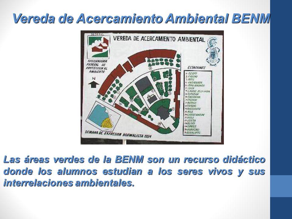 Vereda de Acercamiento Ambiental BENM Las áreas verdes de la BENM son un recurso didáctico donde los alumnos estudian a los seres vivos y sus interrel