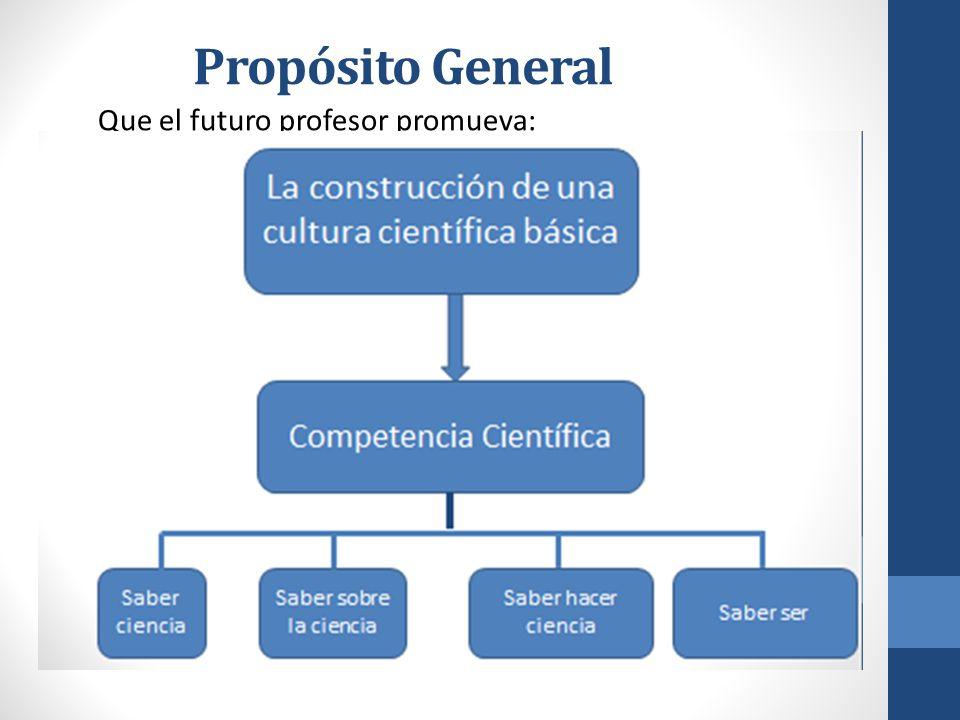 Propósito General Que el futuro profesor promueva: