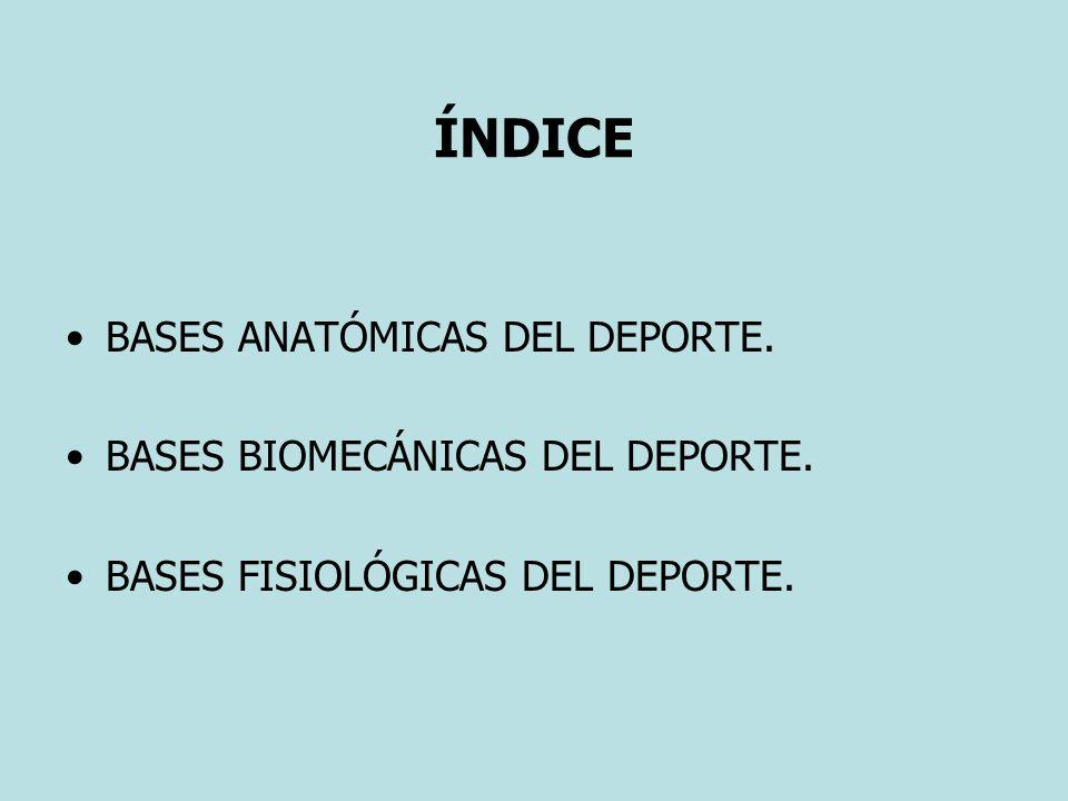 ÍNDICE BASES ANATÓMICAS DEL DEPORTE. BASES BIOMECÁNICAS DEL DEPORTE. BASES FISIOLÓGICAS DEL DEPORTE.