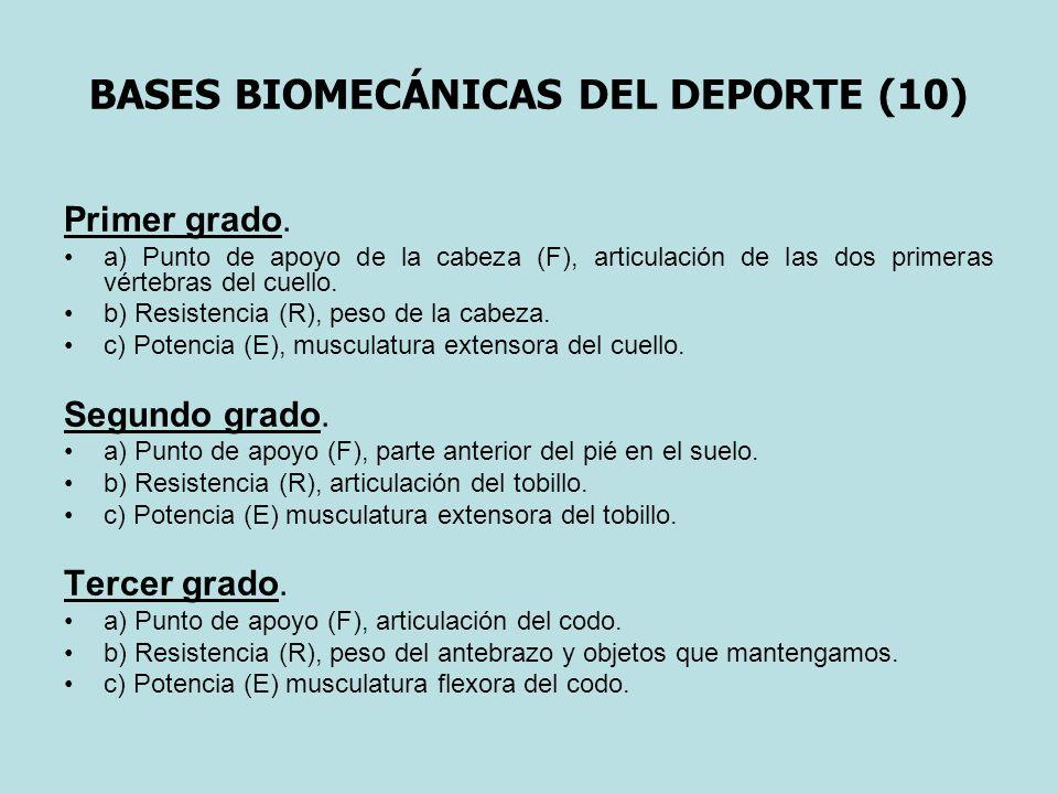 BASES BIOMECÁNICAS DEL DEPORTE (10) Primer grado. a) Punto de apoyo de la cabeza (F), articulación de las dos primeras vértebras del cuello. b) Resist