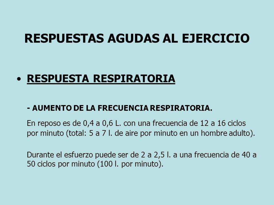 RESPUESTAS AGUDAS AL EJERCICIO RESPUESTA RESPIRATORIA - AUMENTO DE LA FRECUENCIA RESPIRATORIA. En reposo es de 0,4 a 0,6 L. con una frecuencia de 12 a