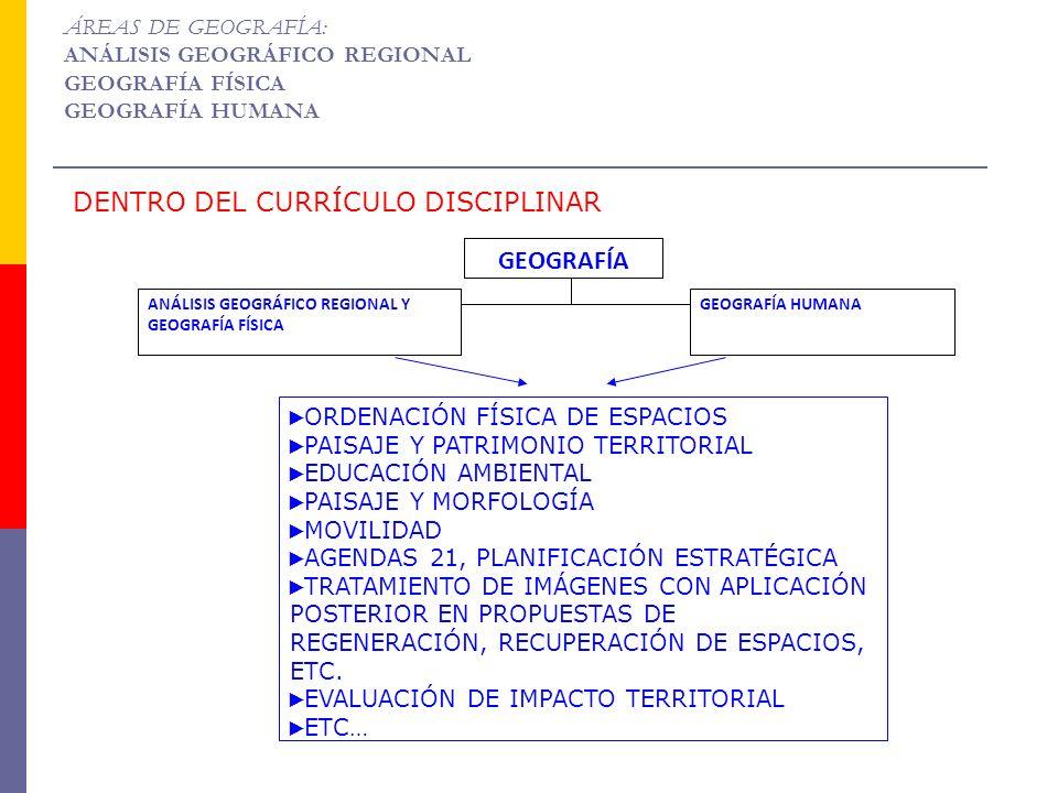 GEOGRAFÍA ANÁLISIS GEOGRÁFICO REGIONAL Y GEOGRAFÍA FÍSICA GEOGRAFÍA HUMANA ORDENACIÓN FÍSICA DE ESPACIOS PAISAJE Y PATRIMONIO TERRITORIAL EDUCACIÓN AM