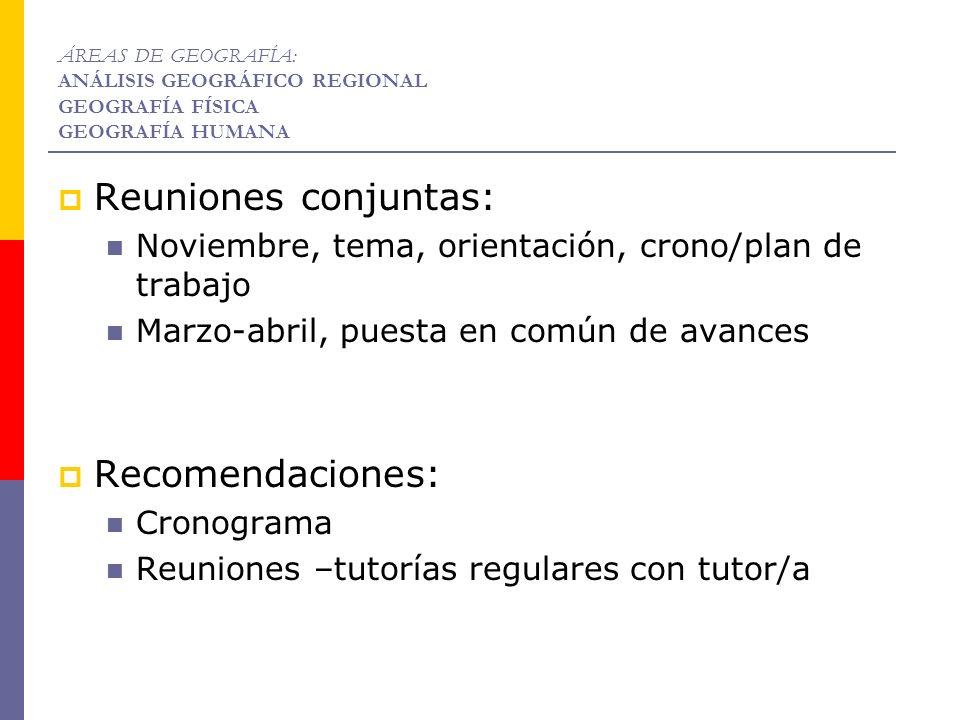 Reuniones conjuntas: Noviembre, tema, orientación, crono/plan de trabajo Marzo-abril, puesta en común de avances Recomendaciones: Cronograma Reuniones