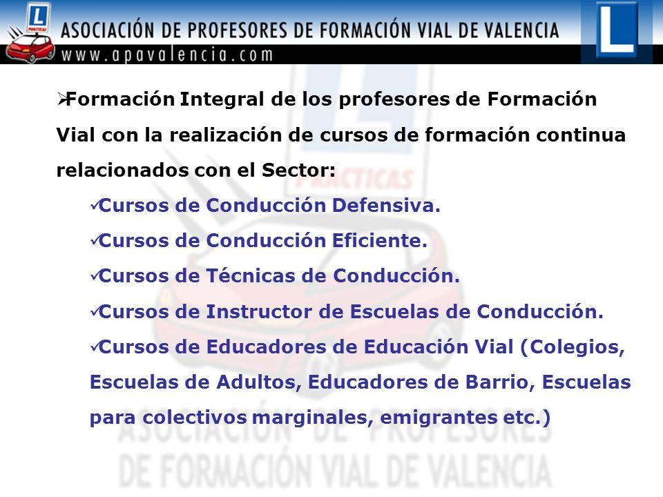 Formación Integral de los profesores de Formación Vial con la realización de cursos de formación continua relacionados con el Sector: Cursos de Conduc