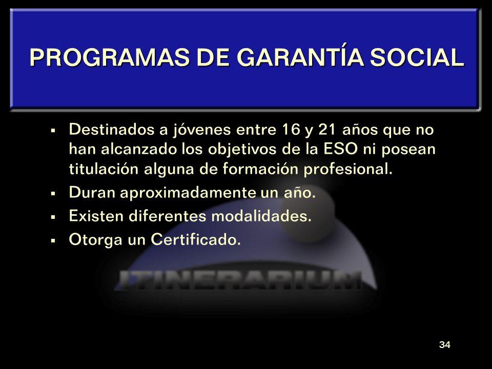 33 Los PROGRAMAS de GARANTÍA SOCIAL