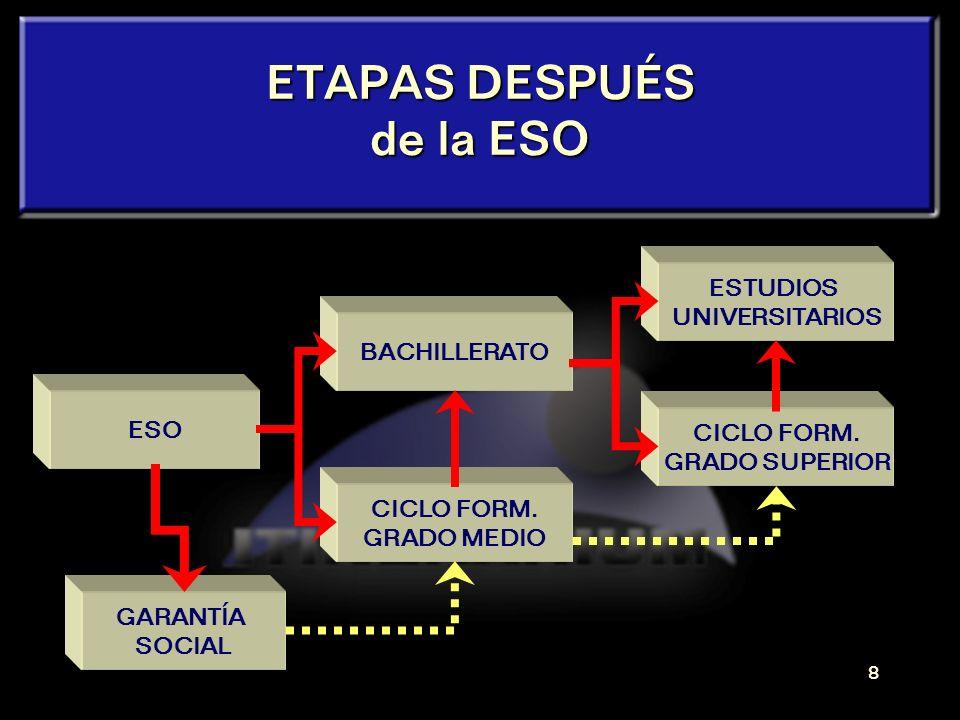 7 ETAPAS después de la E.S.O.