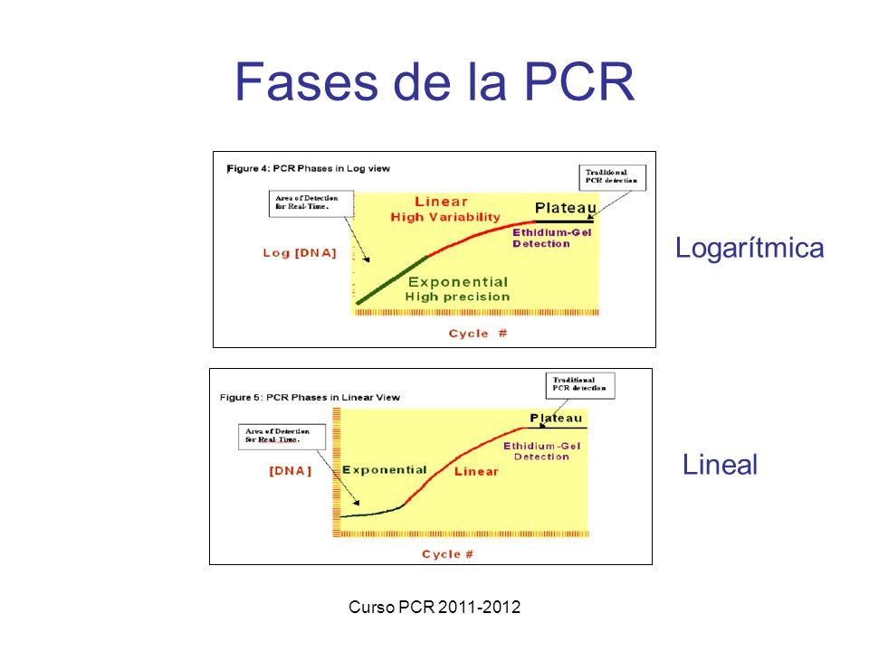 Curso PCR 2011-2012 Fases de la PCR Lineal Logarítmica