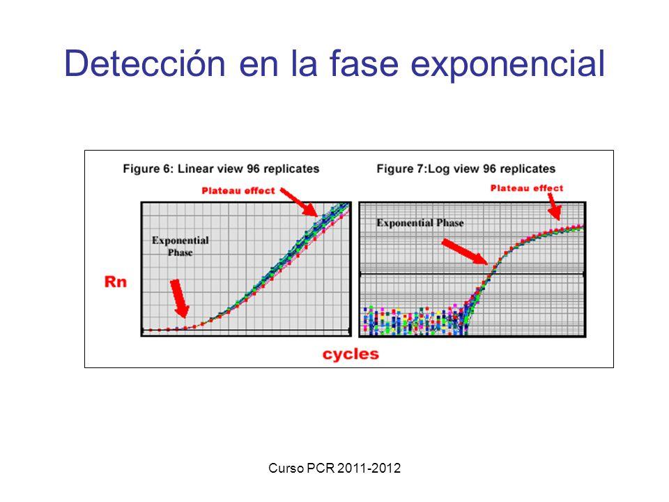 Curso PCR 2011-2012 Detección en la fase exponencial