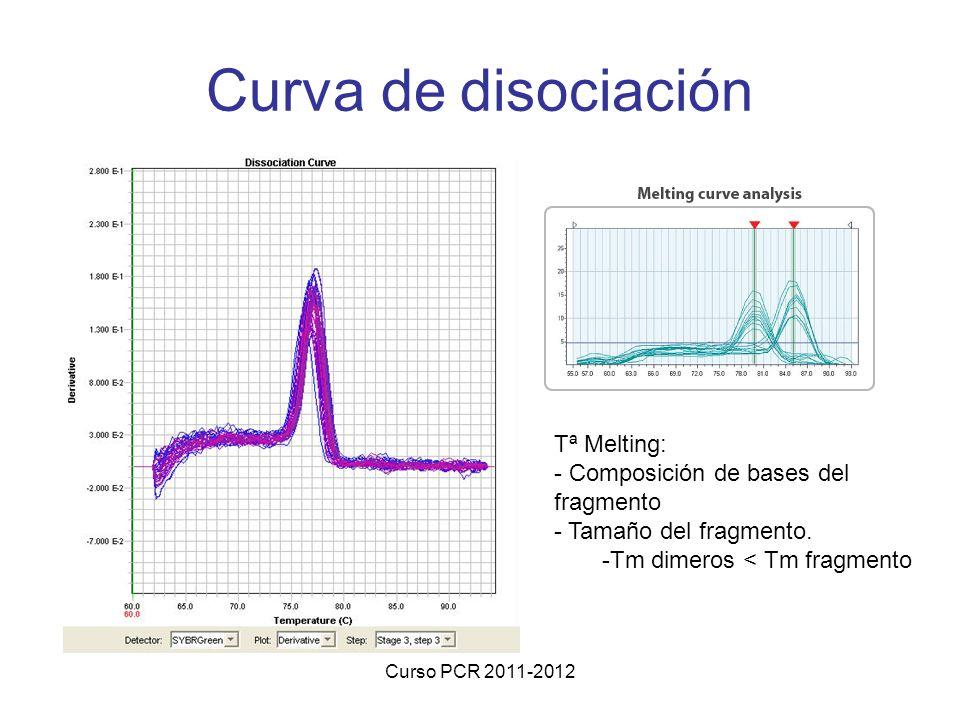 Curso PCR 2011-2012 Curva de disociación Tª Melting: - Composición de bases del fragmento - Tamaño del fragmento. -Tm dimeros < Tm fragmento