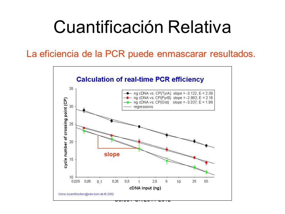 Curso PCR 2011-2012 Cuantificación Relativa La eficiencia de la PCR puede enmascarar resultados.